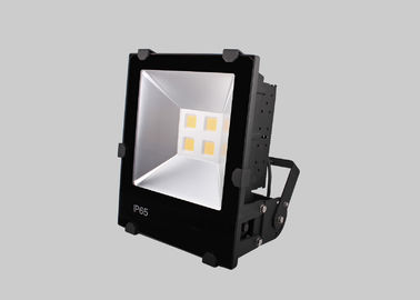China High Brightness Reflector COB LED Flood Lights 100w 100LM/W With Motion Sensor factory